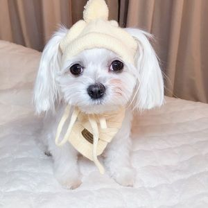 Other - Dog knitted hat and scarf 🧣